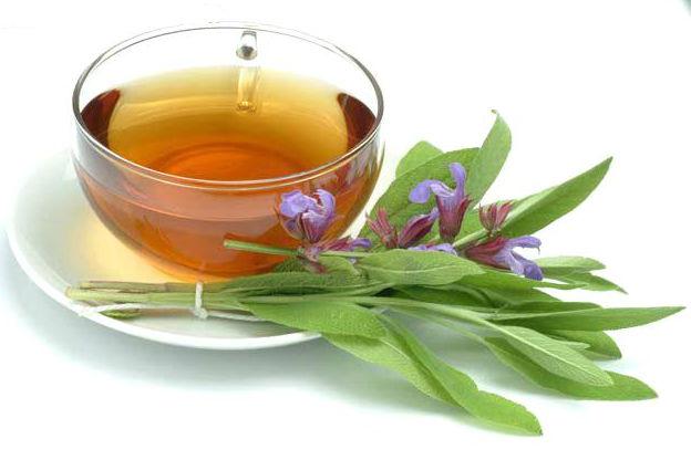 תה מרווה