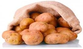 5 קטנות על תפוחי אדמה