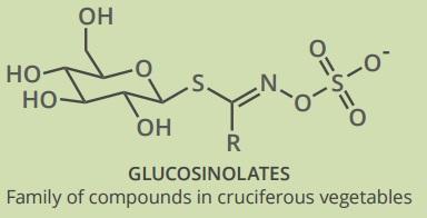 glucosinolates