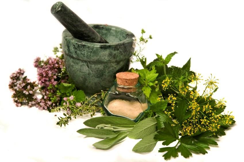 צמחי מרפא וסגולותיהם: